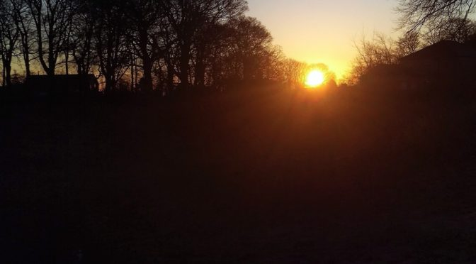 Sunrise Sunset For Business