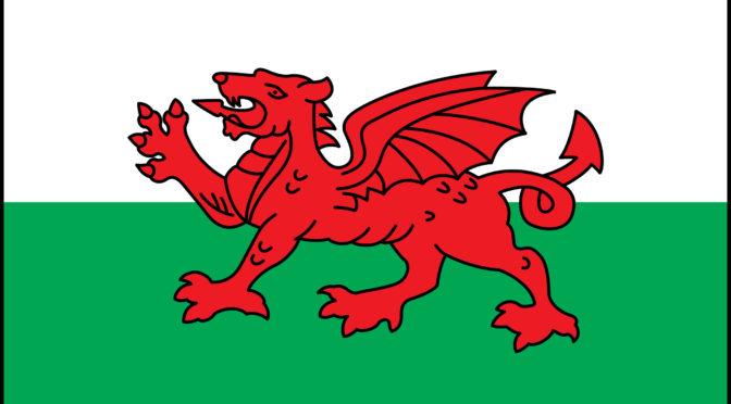 Wales business risk management