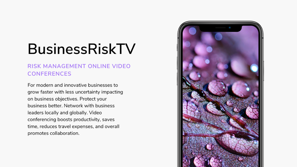 BusinessRiskTV Enterprise Risk Management ERM Video Conferences