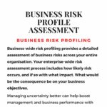 Business Risk Profiling